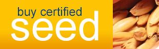 Buy certified seed